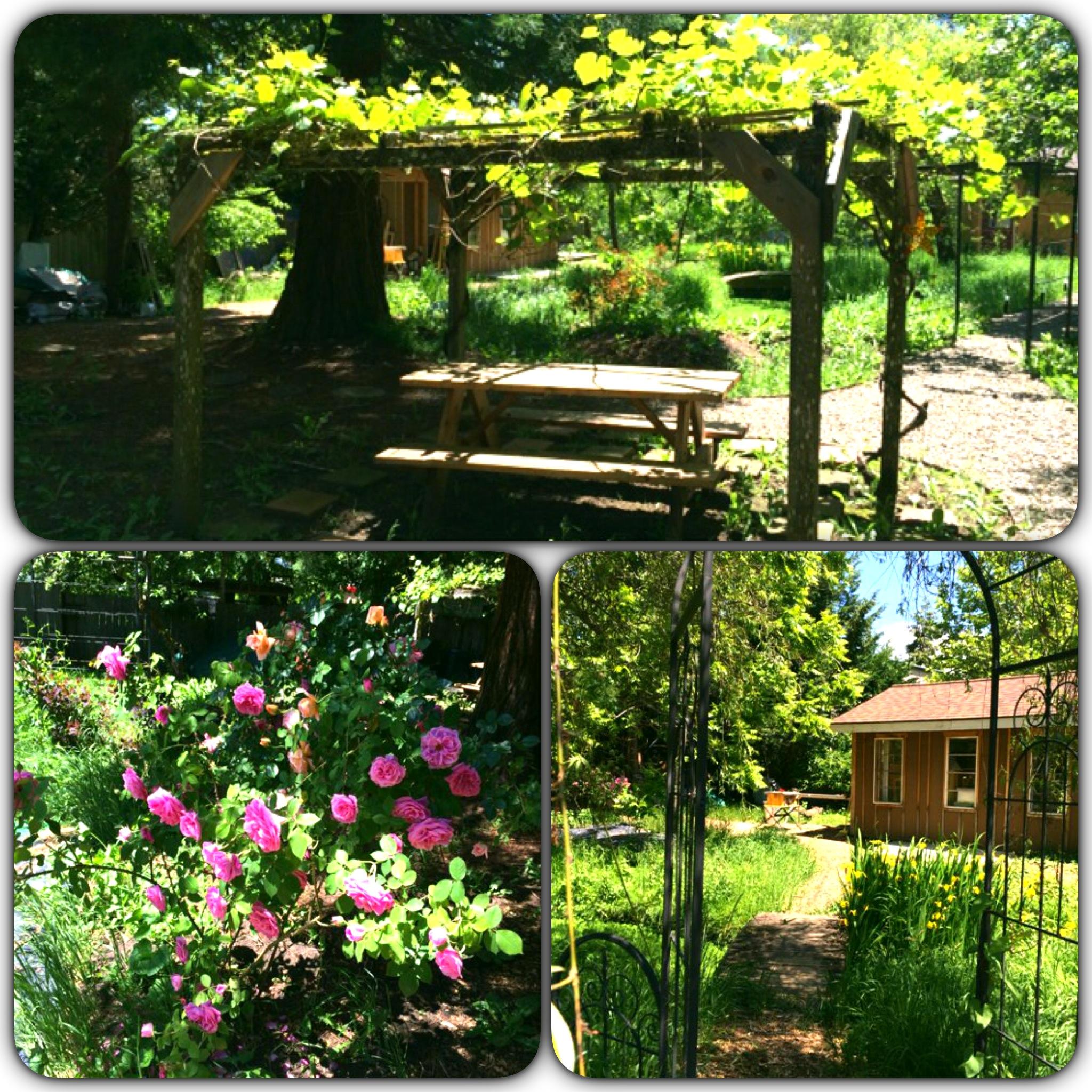 Roundhouse backyard