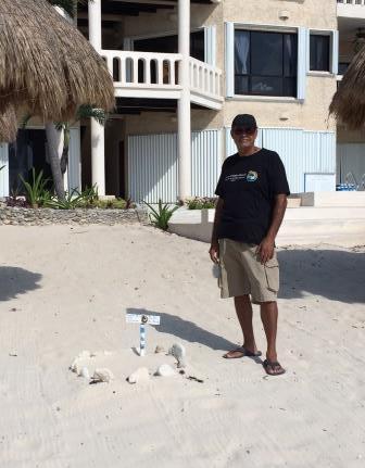 Akumal Turtles Guillermo