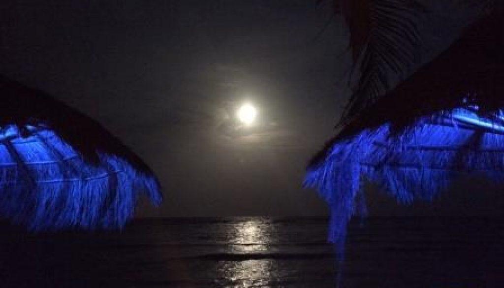 Mexico Moonlight from La Buena Vida
