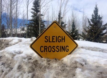 Sleigh Crossing