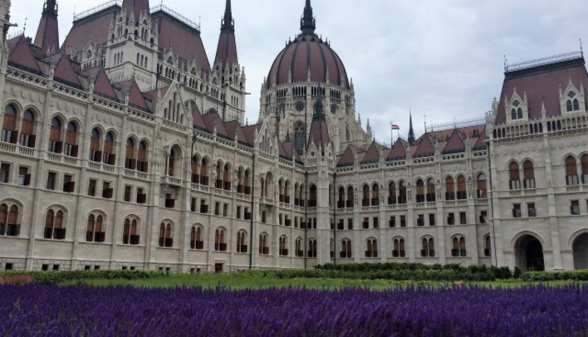 Budapest - Parliament with flowers (Small)